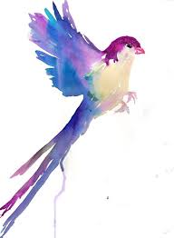 paintings of birds flying best painting 2018