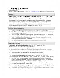 Great Sample Writing Summary Resume For Executive Creative