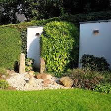 Garten Strauch Baumpflege Sichtschutz