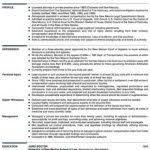 Principal Attorney Resume Example Associate Attorney Resumes