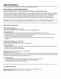 Loan Processor Resume Example Unique Insurance Agent Resume Sample