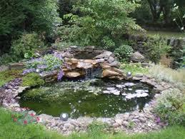Small Picture Garden Ponds Designs Stunning Design Pond Ideas 10 tavoosco