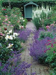cottage garden path best shrubs