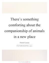 Companionship Quotes Impressive Companionship Quotes Sayings Companionship Picture Quotes Page 48
