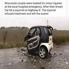 after their smart car hit a squirrel on highway the squirrel refused treatment and left the scene