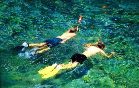 Image result for Snorkeling images
