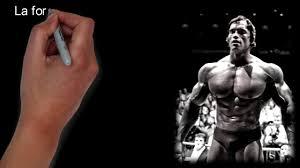 10 Citations Darnold Schwarzenegger Pour Te Motiver Citations Motivantes Inspirantes Pour Réussir