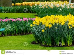 Small Picture Beautiful Garden Royalty Free Stock Image Image 4830946