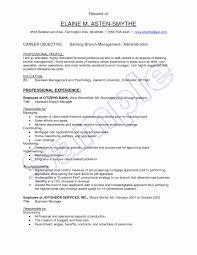 Ecommerce Specialist Sample Resume Inspirational Edi Resume