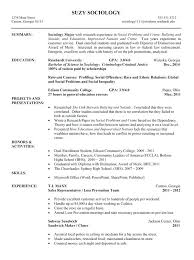 Functional And Chronological Resume Assistant Property Manager ...
