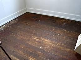 removing glue or adhesive from hardwood floors the speckled goat removing glue or adhesive from hardwood floors