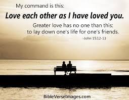 Bible Verse About Friendship John 404040 Bible Verse Images Fascinating Aboutfriendshep