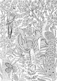 Animal Coloring Page Animal Kingdom Coloring Pages Best Free