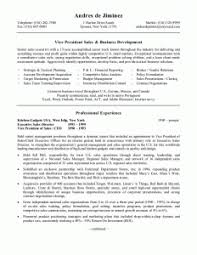 Ideas Of Great Resume Examples For Sales Simple Retail Sales ...