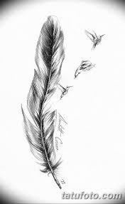 фото эскиз тату колибри 15102018 004 Sketch Of Hummingbird