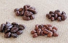 A Definitive Guide To The 4 Main Types Of Coffee Beans