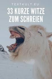 33 Witze Zum Schreien Sprüche Zitate Zitate Lustig Lustig