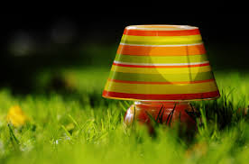 grass light lawn meadow sunlight leaf flower atmosphere green red color romantic lamp yellow lampshade lighting