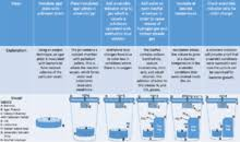 Bicarbonate Indicator Colour Chart Bicarbonate Indicator Revolvy