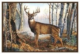whitetail deer area rug rugs kijiji red rustic