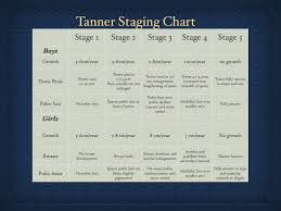 Tanner Scale Chart