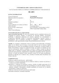 Informe Profesional Silabo Practica Pre Profesional 2012 Ii