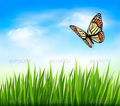 green grass blue sky flowers. Nature Background With Green Grass And Butterfly - Flowers \u0026 Plants Blue Sky L