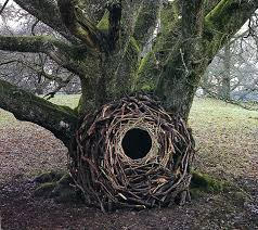 earth works art site specific land art by andy goldsworthy are ephemeral earthworks