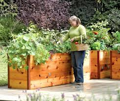 decorative raised garden beds elevated cedar raised garden beds decorative raised garden beds plans