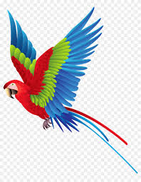 colorful birds flying clipart.  Flying Colourful Parrot Png Clipart  Colorful Bird In Birds Flying E