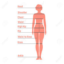Woman Size Chart Human Front Side Silhouette Isolated On White