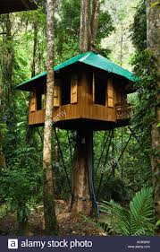 8 Stunning Treehouses In Asia You Can Actually Stay In  TripZilla Treehouse In Thailand