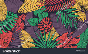 Cool Pattern Amazing Inspiration Ideas