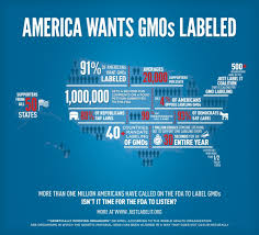pros and cons of mandatory labeling genetically altered food  why prevent labeling of gmo foods the sleuth journal