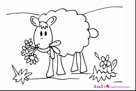 Small Picture Magnificent lamb and sheep coloring page with sheep coloring page