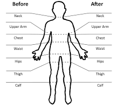 full body measurement chart simple body measurements for progress tracking health weight