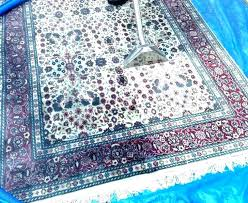 pet proof carpet pet proof area rugs how to clean medium size of cat with vinegar
