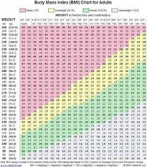 What Is The Best Way To Lose Weight For An 18 Year Old