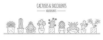 Cactus Dunne Lijn Art Geãsoleerd Icon Set Voor Kleurplaat Design