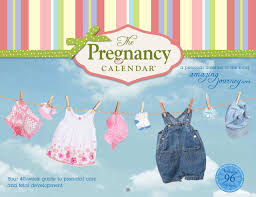 The Pregnancy Calendar Your 40 Guide To Prenatal Care And