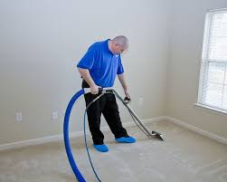 Carpet Cleaning Auckland Carpet Spot Removal Upholstery Cleaning