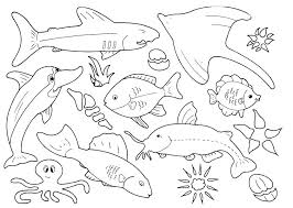 Printable Fish Coloring Pages Top Free Printable Fish Coloring Pages