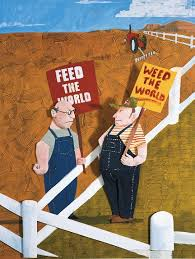 genetically modified foods what s in it for you fall  genetically modified foods illustration by david wheeler
