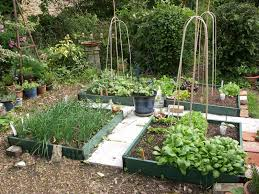 Small Picture small potager garden design Google Search Gardens Pinterest