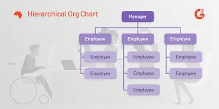Employee Hierarchy Chart What Is An Organizational Chart Examples And Free Template