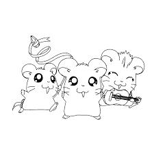 Schattige Hamster Kleurplaat Malvorlagen Fur Kinder Ausmalbilder