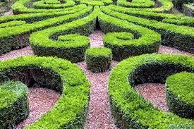 Small Picture Cut 22 ideas for garden design spring Buchsbaum Interior Design