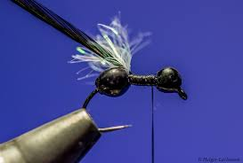 Ant Fly Patterns Inspiration Winged Ant By Holger Lachmann Hatches Fly Tying Magazine