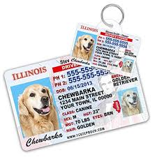 For Dogs Tag - Tags Personalized Cat Pets And Wallet Card Id Dog com Cats Driver Pet Supplies Illinois Amazon License Custom