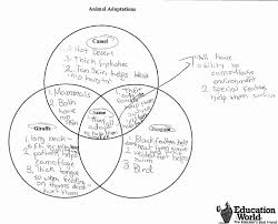 Formative Vs Summative Assessment Venn Diagram Sixth Grade Lesson How Does Color Help An Animal To Survive